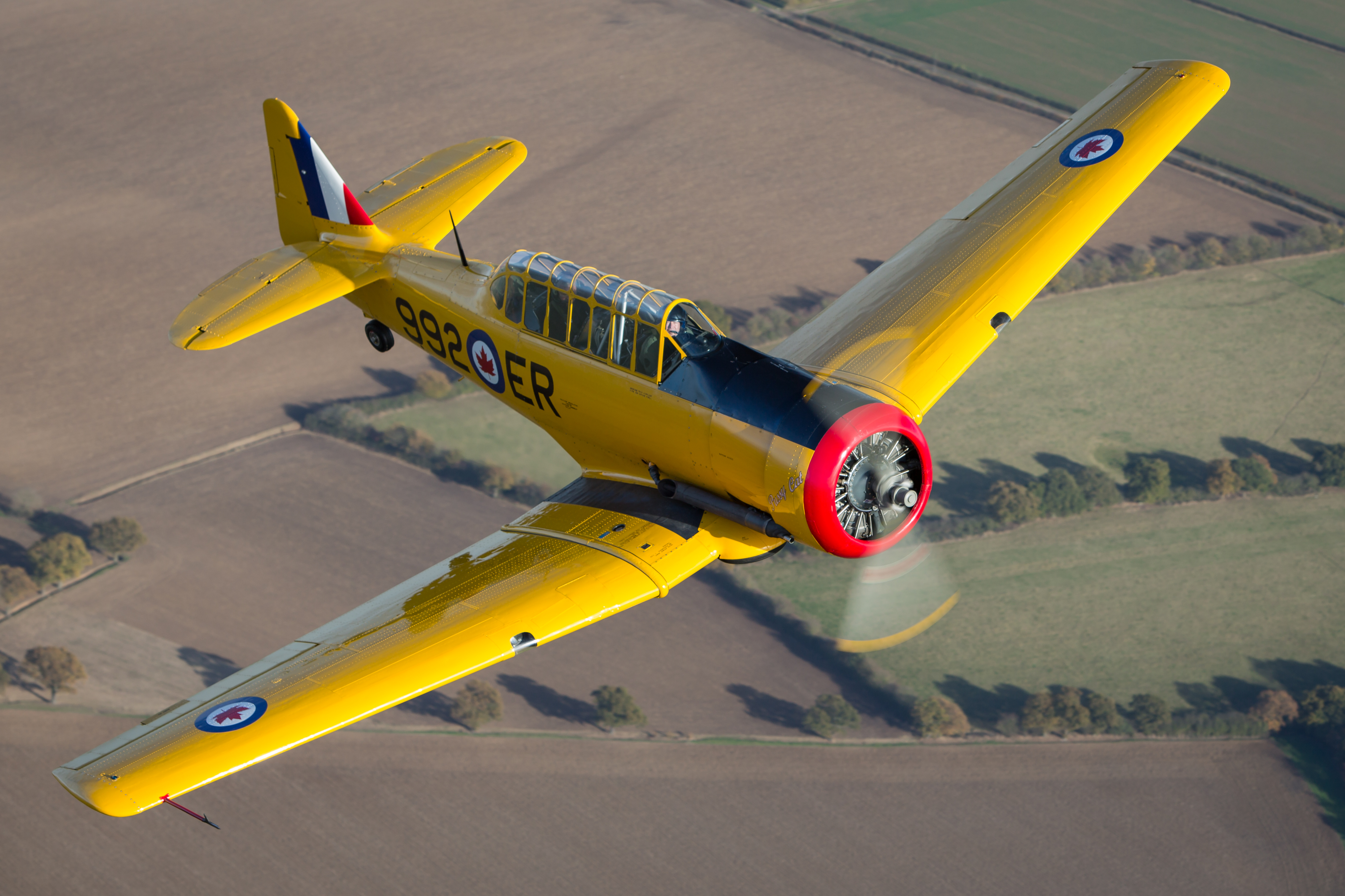 North American Harvard in flight