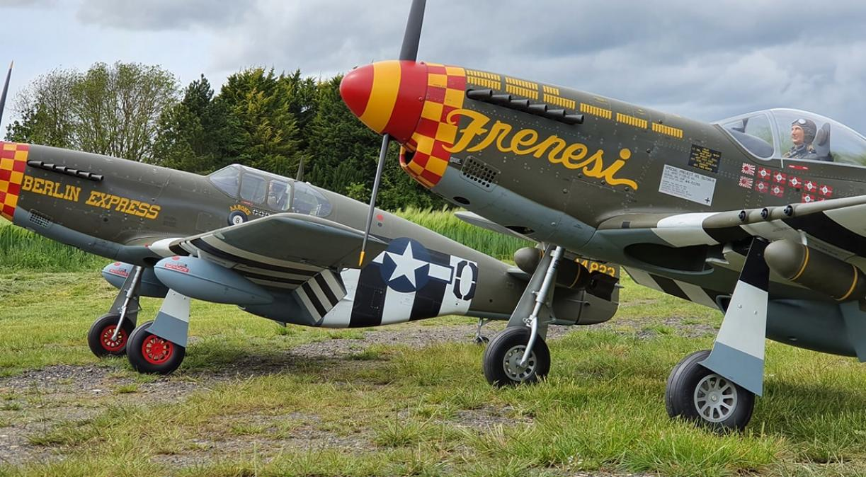 Large Scale Mustang pair