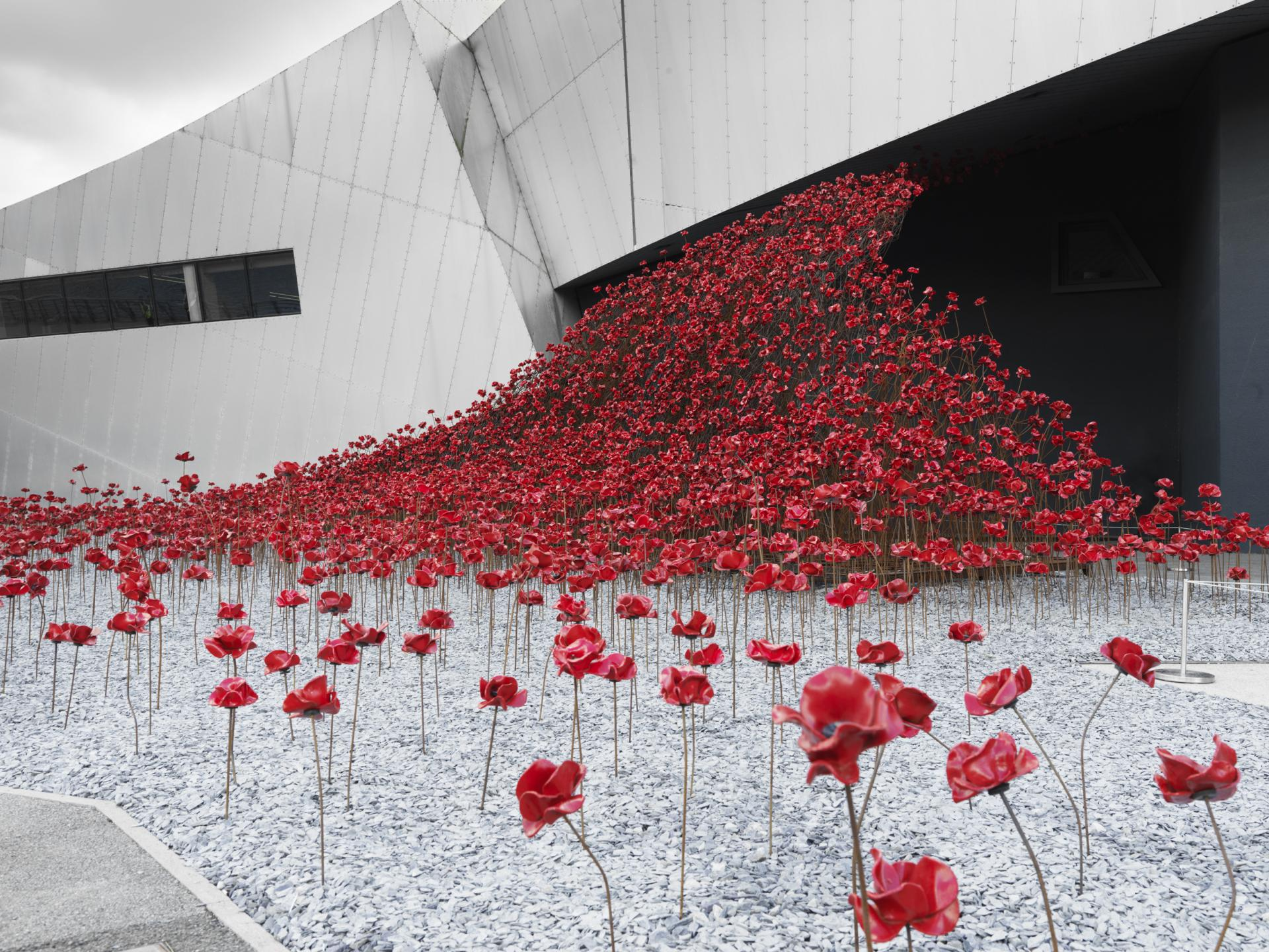 Poppies: Wave at IWM North, Manchester