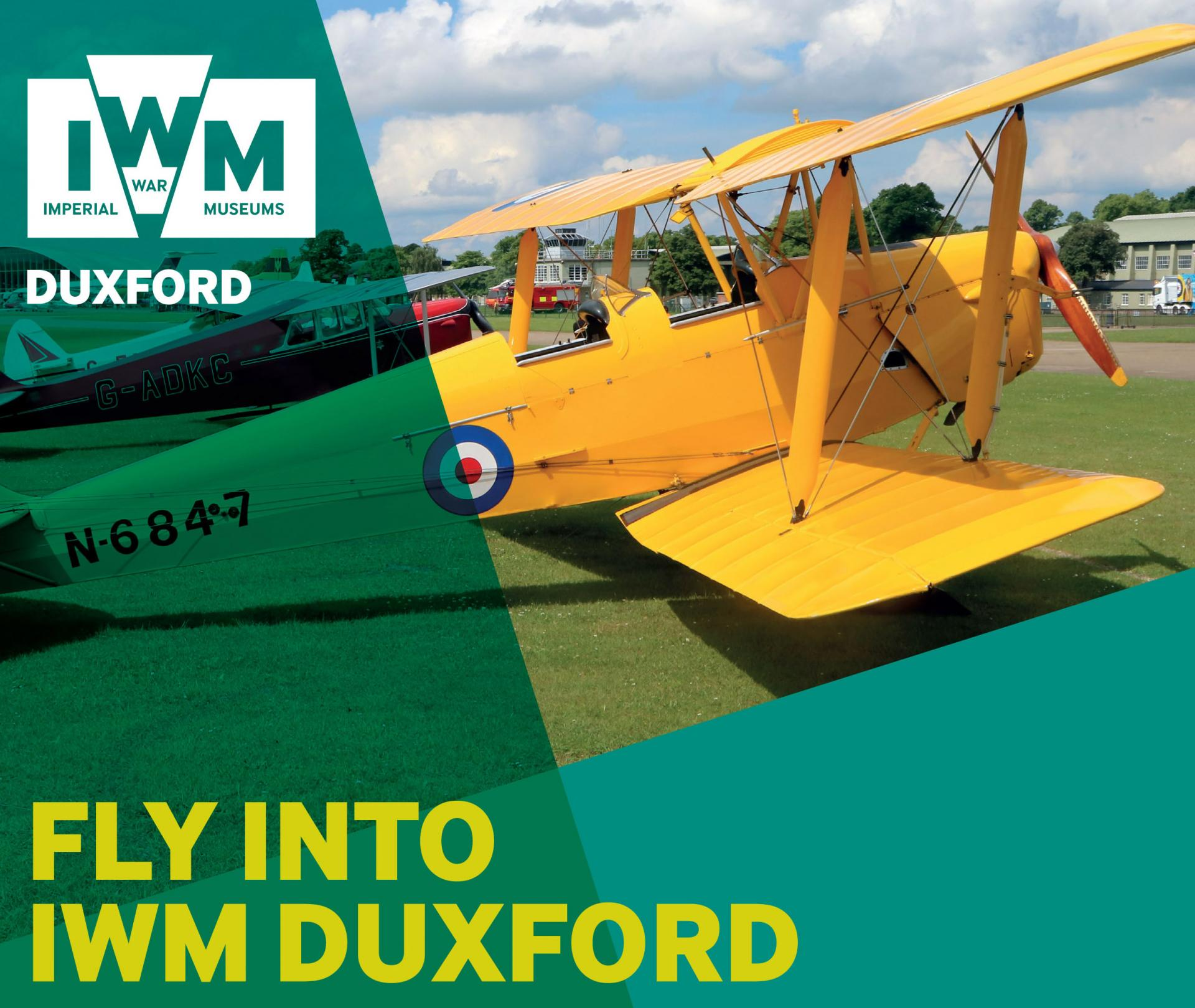 Fly into Duxford artwork