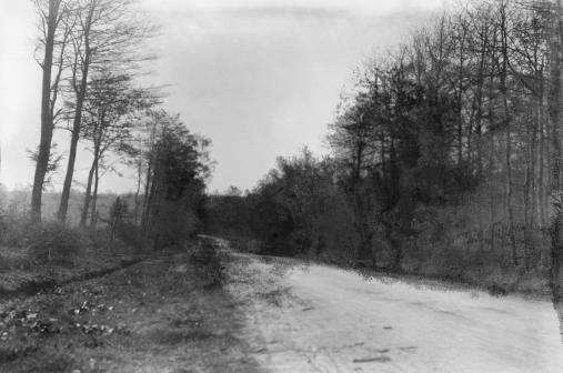 Western end of road across the Mormal Forest to Jolimetz, 1920.