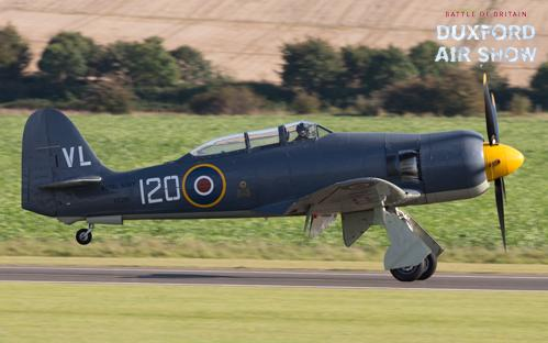 Sea Fury T20 Navy Wings at Duxford Air Shows