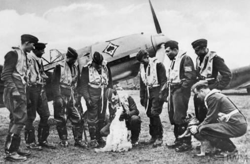 Battle of Britain pilots with a dog Imperial War Museums image licensing