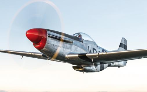 P-51D Mustang Warhorse flying against an evening sky